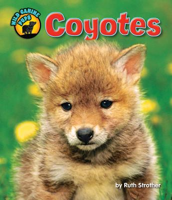 Coyotes By Strother, Ruth